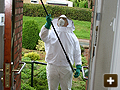 Removal of wasp nest in Oxford